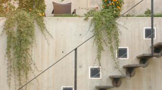 Escalier terrasse